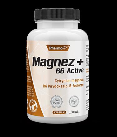 MAGNEZ + B6 ACTIVE 120kaps. - PHARMOVIT